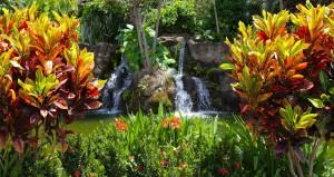 Jardim Japonês em Caldas Novas